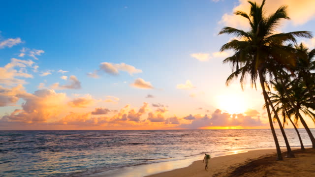 ws pan left, sunset over tropical beach and palm trees - distant stock videos and b-roll footage