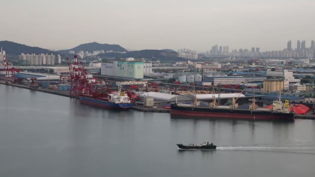 stockvideo's en b-roll-footage met pan left to right a cargo ship right sits moored at the port of incheon in incheon south korea on monday sept 4 a cargo ship left and the bulk... - incheon