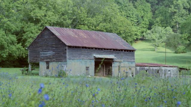 pan left to right: classic barn in delaware (shot on red) - 農家の納屋点の映像素材/bロール