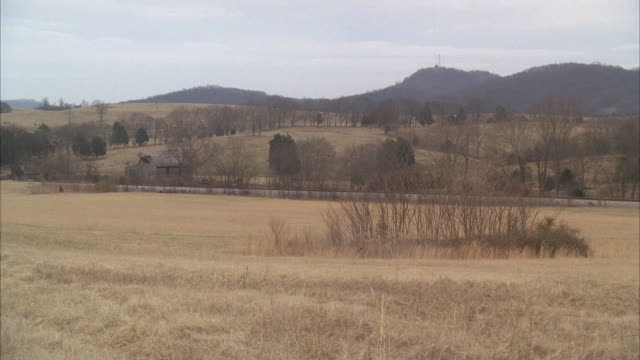 vidéos et rushes de pan left to right of dry grass in meadows, countryside or rural area. freight train on railroad tracks. bare branches on trees. - tennessee