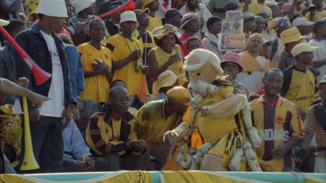 vidéos et rushes de pan of a kaizer chiefs fan dressed in a yellow bear costume dancing in front of the other fans - dancing bear