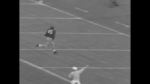 ws pan of filled stanford stadium and game on field / vs football game player runs in touchdown / ms crowd cheering / vs football game cheering crowd... - university of california stock videos and b-roll footage