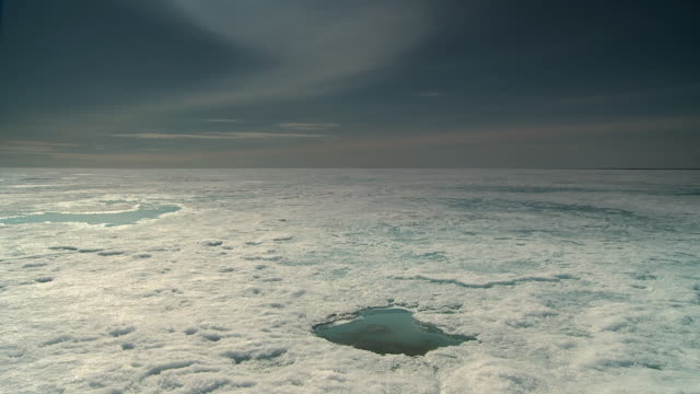 pan of the hardened sea ice in the arctic circle wide landscape - hole stock videos and b-roll footage