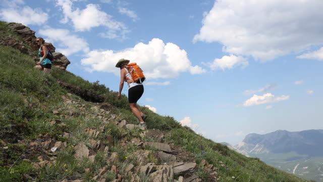 vídeos y material grabado en eventos de stock de pan of two hikers ascending trail in mtn meadow - artículo de montañismo