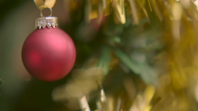 Pan onto a simple red bauble hanging on an artificial Christmas tree.