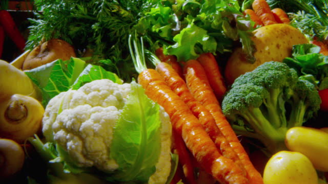pan over freshly harvested vegetables - vegetable stock videos & royalty-free footage