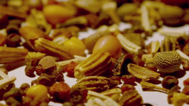 vídeos de stock e filmes b-roll de pan over various nuts, grains and seeds - fruto seco
