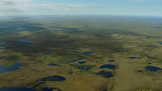 pan over wetlands in yukon delta nwr - wildlife reserve stock videos & royalty-free footage