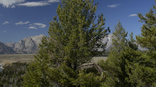 pan r to l to grand tetons and snake river,grand teton national park - river snake stock videos & royalty-free footage
