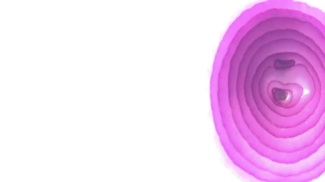 pan right across a slice of red onion on a white background. - red onion stock videos & royalty-free footage