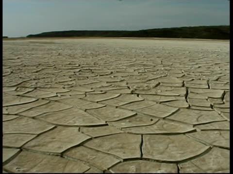 WA pan right across dry salt lake, with cracked grey ground, Chelbi desert, Kenya