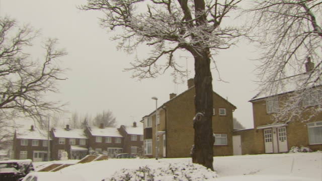 ms pan right across houses covered in snow, trees in foreground thick snow, united kingdom - snowing stock videos & royalty-free footage