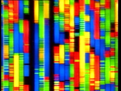 pan right across multi-colored dna code processing on display screen - dna test stock videos and b-roll footage