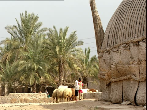 pan right across reconstructed walls decorated with animal sculptures. the walls were reconstructed by saddam hussein and stamped with his name in... - arte dell'antichità video stock e b–roll
