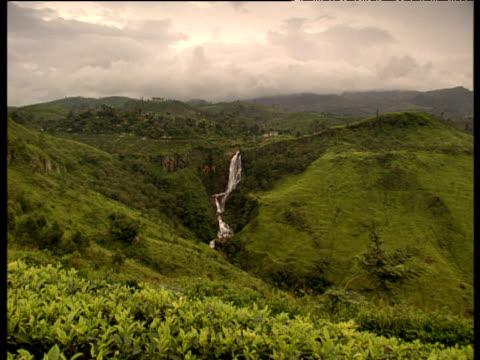 Pan right across tea plants growing on steep hillsides from waterfall to river Sri Lanka