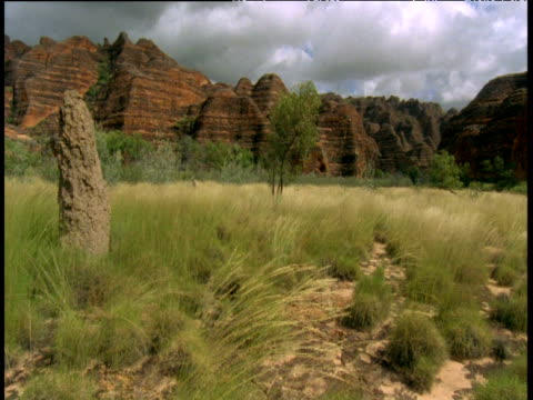 pan right along beehives, bungle bungles, australia - hill stock videos & royalty-free footage