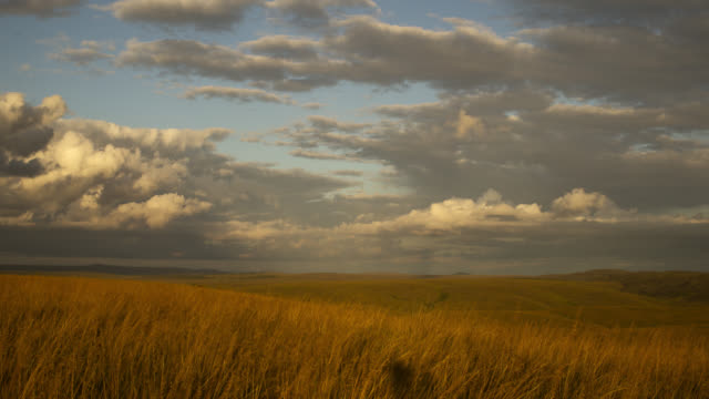 pan right as clouds billow over grassland as sun sets. - plain stock videos & royalty-free footage