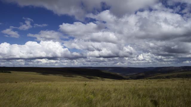 pan right as clouds billow over grassland. - cerrado stock videos & royalty-free footage