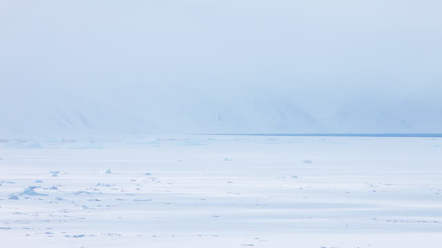 Pan right, foggy arctic tundra in Greenland