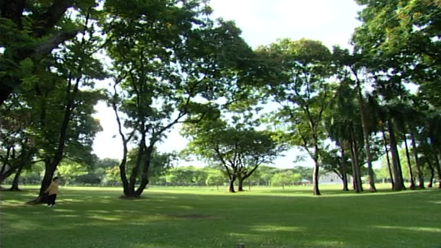 pan right from a woman stretching to a group practicing yoga in a park. yoga, practiced by over 200 million people, has a un designated international... - mat stock videos & royalty-free footage