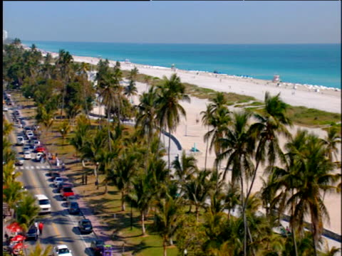 pan right from window over ocean drive lined with palm trees to miami beach with white sand and turquoise blue sea - サウスビーチ点の映像素材/bロール