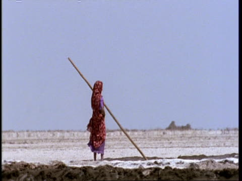 mwa pan right, gujarat, indian woman standing in salt fields, gujarat, india - indigenous culture stock videos & royalty-free footage