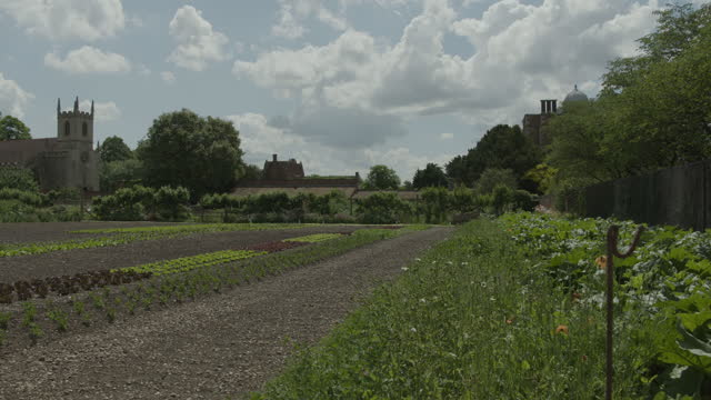 pan right of the kitchen garden at doddington hall with st peters church in the background - botany stock videos & royalty-free footage
