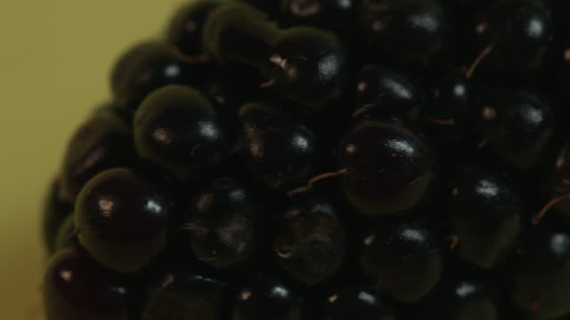pan right onto and then off a blackberry against a plain yellow background. - ascorbic acid stock videos & royalty-free footage