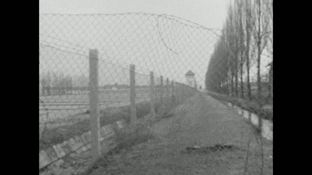 pan right over empty grounds of the former dachau concentration camp with visitors to the barbed wire fence, sentry tower and poplar trees; 1966. - horizon over land stock videos & royalty-free footage
