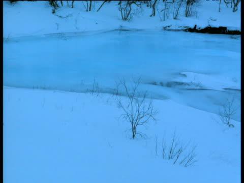 """vidéos et rushes de pan right over frozen river, abisko, sweden - """"bbc natural history"""""""