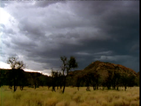 Pan right over outback with dark storm clouds overhead, Northern Territory