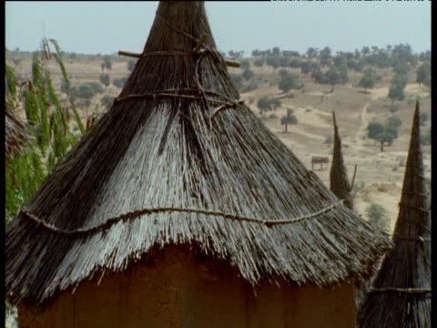 pan right past thatched roofs of dogon village, mali - tetto di paglia video stock e b–roll
