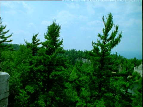 pan right round forests mohonk mountains - mohonk stock videos and b-roll footage