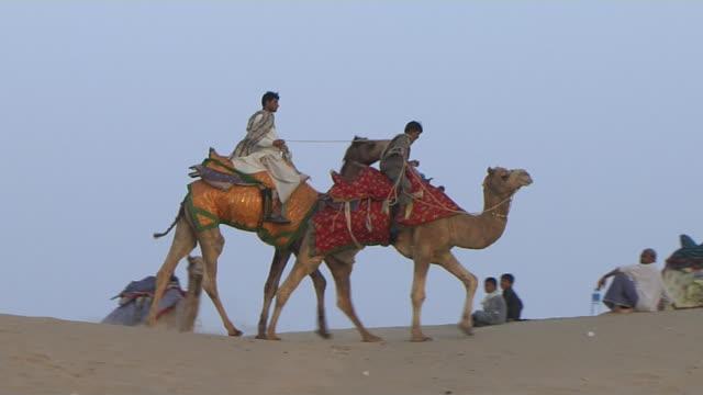pan right shot desert camel ride jaisalmer rajasthan india - camel stock videos & royalty-free footage