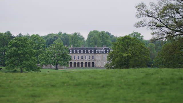 pan right shot of boughton house with cows grazing in a field - pasture stock videos & royalty-free footage