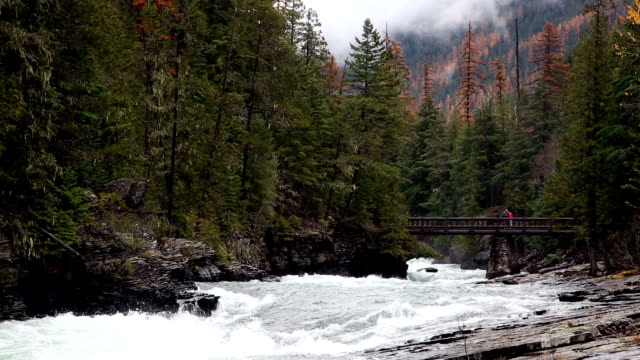 pan right shot of people crossing footbridge on raging mountain river with evergreens and mist rising from mountains. - mcdonald creek stock-videos und b-roll-filmmaterial
