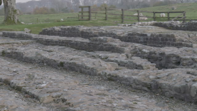 pan right shot of the remains of the birdoswald roman fort along hadrians wall - turf stock videos & royalty-free footage