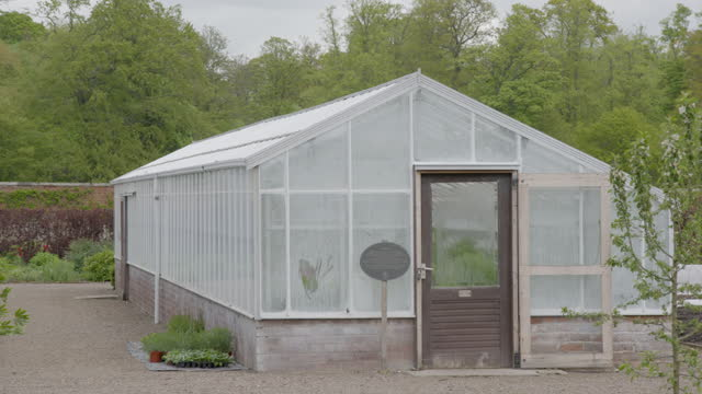 pan right shot of tulips and greenhouses in the walled garden at floors castle - orchard stock videos & royalty-free footage