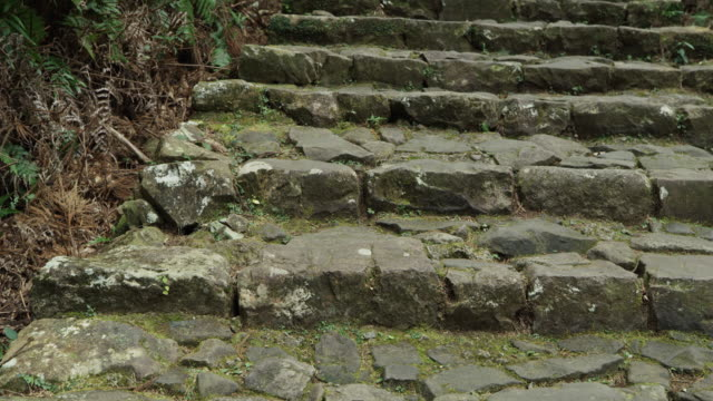 pan right, stone stairs in kumano kodo - steps and staircases stock videos & royalty-free footage