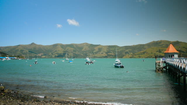 pan right to people swimming and jumping off daly's wharf, akaroa - pier stock videos & royalty-free footage
