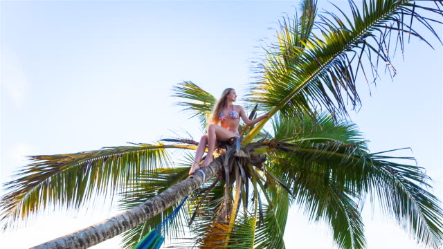 MS pan right, young woman on top of palm tree looking out over tropical beach