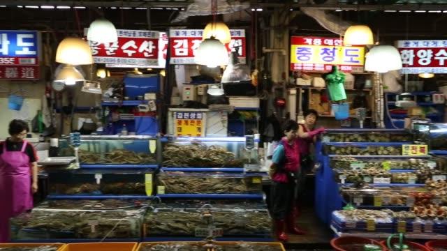 pan r-l noryangjin fish market in seoul, a vendor slices fresh fish at market, fresh fish in tanks at market stall, a vendor works at market stall, a... - mollusc stock videos & royalty-free footage