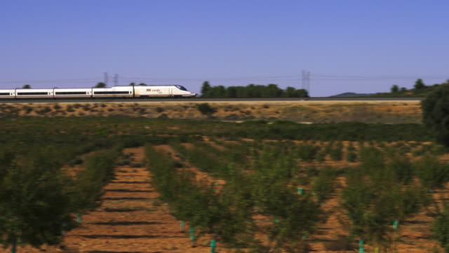 pan shot, ave high speed train approaching with almond trees in foreground, valencian community, spain - spain stock videos & royalty-free footage