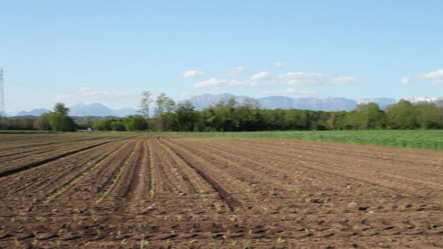 Pan shot of Farmlands with mountains in background