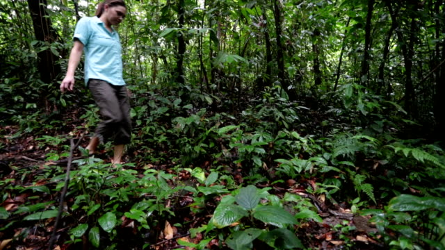pan shot of man and woman walking away from camera in jungle. - gemeinsam gehen stock-videos und b-roll-filmmaterial