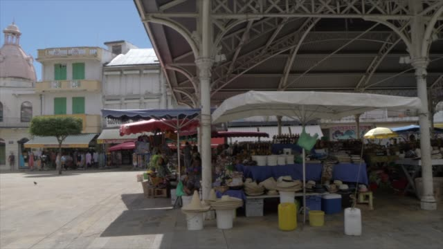 vidéos et rushes de pan shot of spice market in spice market square, pointe-a-pitre, guadeloupe, french antilles, west indies, caribbean, central america - guadeloupe