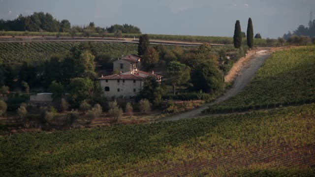 pan shot of vineyards - florence italy stock videos & royalty-free footage