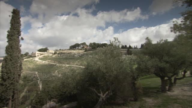 Pan taken from a tree on the Mount of Olives across Jerusalem.