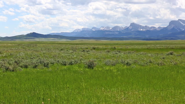 pan telephoto shot of majestic rocky mountains and lush green prairie under a puffy white cloud filled blue sky. - majestic stock videos & royalty-free footage