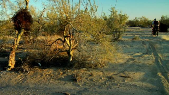 pan da corsa motorcross bicicletta e tigh su ruote - penisola di bassa california video stock e b–roll